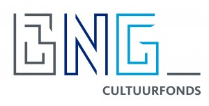 Logo BNG Cultuurfonds